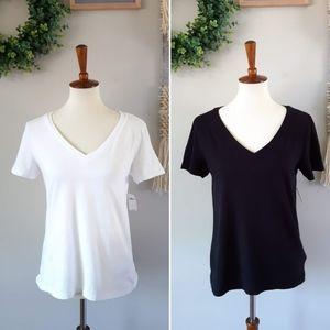 GAP | Organic Cotton Vintage V-Neck T-Shirt LOT